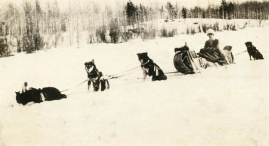 Kate_Rice_Prospector,_Trapper,_and_Adventurer_with_her_dog_team