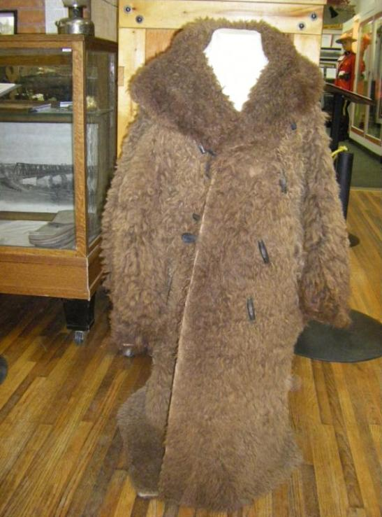 Buffalo Coat_PAHS