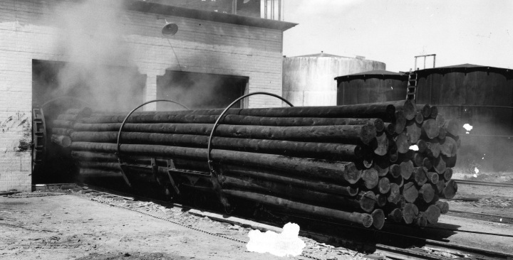 A 97 - Freshly treated power poles at Northern Wood Preservers ca 1955 005